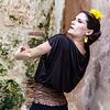 Flamenco Ecos #203
