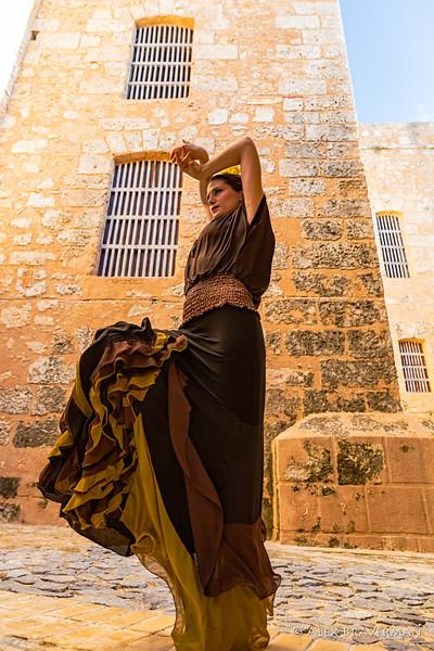 Flamenco Ecos #479