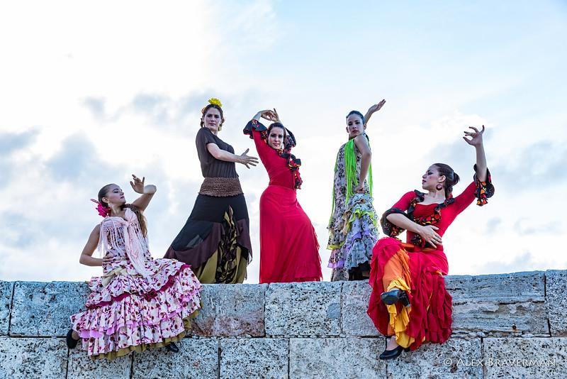 Flamenco Ecos #839