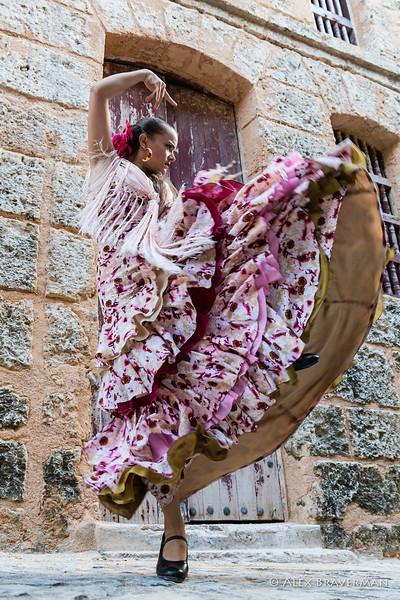 Flamenco Ecos #659