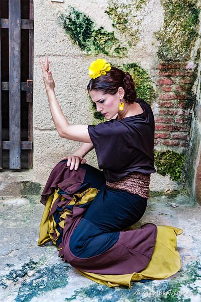 Flamenco Ecos #286