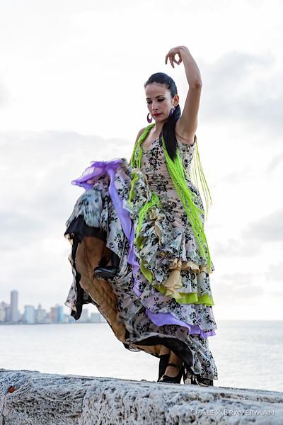 Flamenco Ecos #867