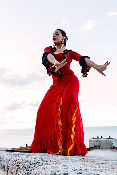 Flamenco Ecos #878