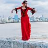 Flamenco Ecos #857