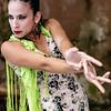 Flamenco Ecos #190