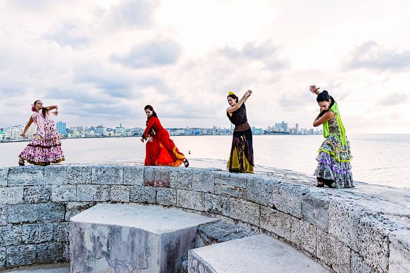 Flamenco Ecos #898