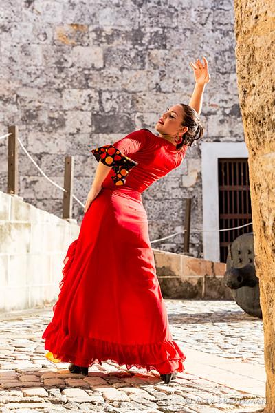 Flamenco Ecos #392