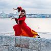 Flamenco Ecos #893
