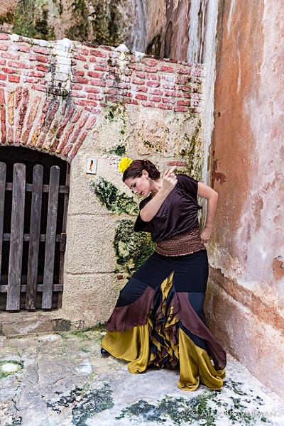 Flamenco Ecos #220
