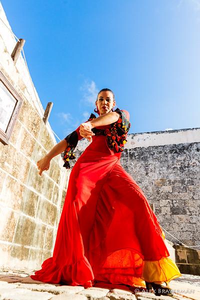 Flamenco Ecos #432