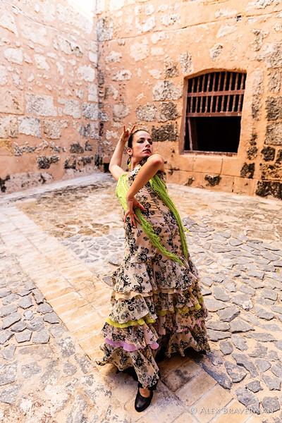 Flamenco Ecos #542