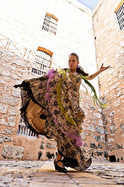Flamenco Ecos #575