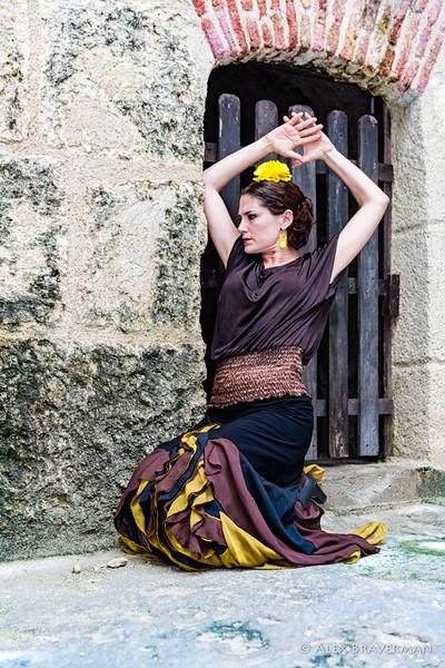 Flamenco Ecos #305