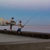 fish at 6:38 AM