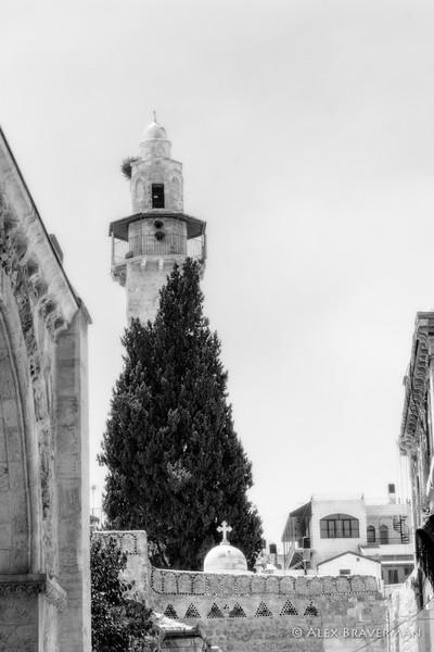 Neighbors, Old Jerusalem