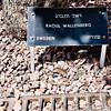 Doorways to Israel, Wallenberg