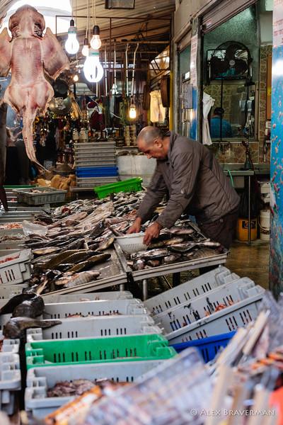 Fish Market, Acco