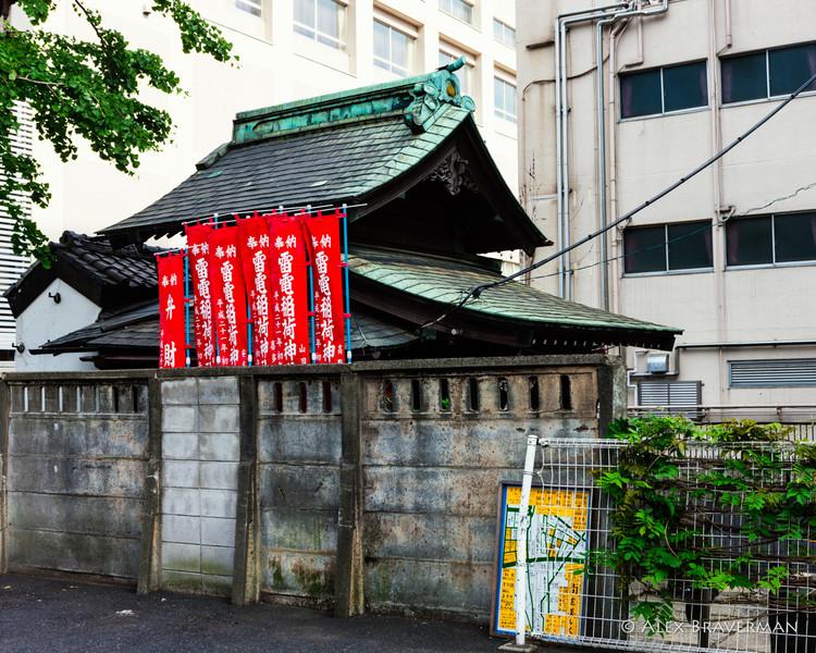 Mentor Series: Japan