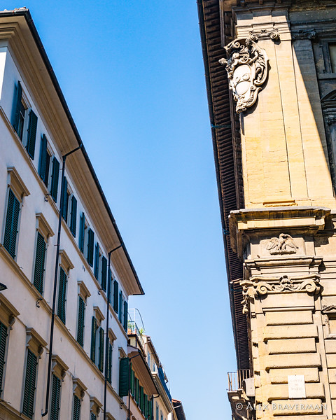 ... and then, after they had turned right on the Street of the Proconsul, the Pazzi palace. The<br /> younger boy ran his hand lovingly over the irregular roughhewn blocks of its walls.