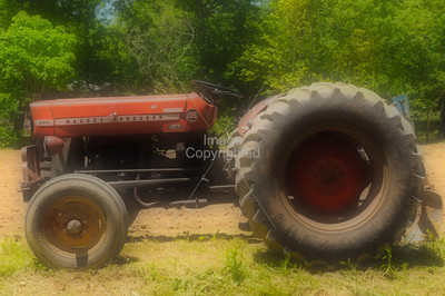 Massey Ferguson Tractor. Cumberland County, Tennessee.