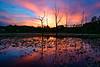 Beaver Marsh Sunset, CVNP