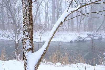 Cuyahoga River near Ira Road, Cuyahoga Valley National Park