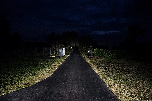 Driveway lit by headlights.  ISO 1250