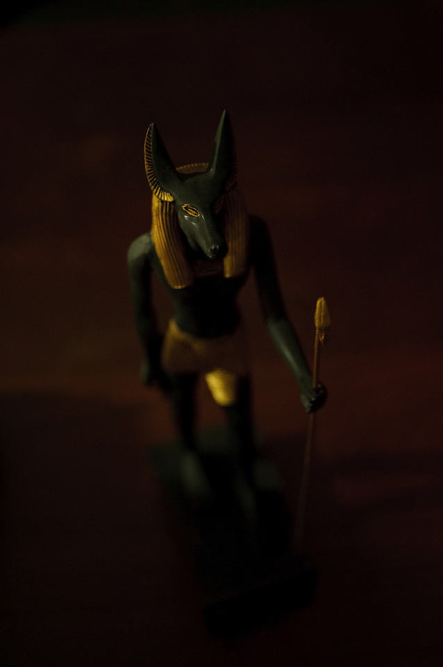 anubis low light - D700 --8