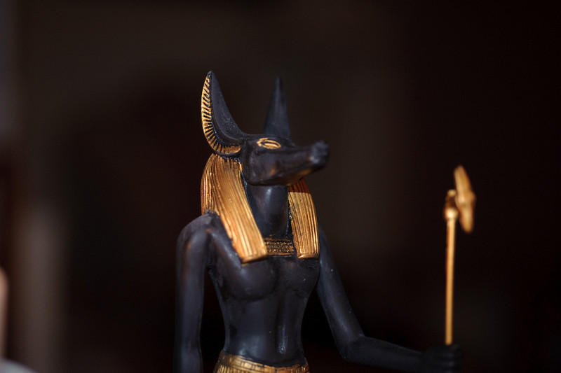 anubis low light - D700 --7