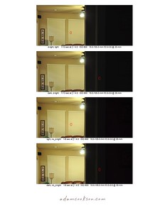 This series of photos was made to demonstrate the effect that the focus point location has on exposure in the D90. (The D80 was known for heavily biasing the exposure for the region under the focus point). The red rectangle shows the approximate location of the focus point in the shot. Also, a pair of shots were made with and without 'Active D-lighting' enabled. The camera was in Program exposure mode with 3D matrix metering.