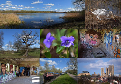 11.04.15 - Hidden Gems  These shots are all from a guided photo walk I led yesterday afternoon. Believe it or not all of this is no more than a mile from Lincoln city centre, but most people have no idea many of these places exist. The top left panorama is Boultham Mere nature reserve, a former gravel pit that is now a beautiful haven of peace and tranquility where I also found the violets in the centre image. The nesting pair of swans were on a catchwater drain nearby. The graffiti pics are an old semi-derelict waterboard building, great fun to explore. The boats are on the Foss Dyke, a canal originally dug by the Romans, which gives the unique view up to the Cathedral and Castle at bottom right. The characterful tree centre right is on an old landfill site, which is also now a wonderful place to explore and photograph. I think I'll be repeating this walk as the seasons change, there is so much of interest and all very different.