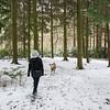 18.03.18 - Fun in the Woods