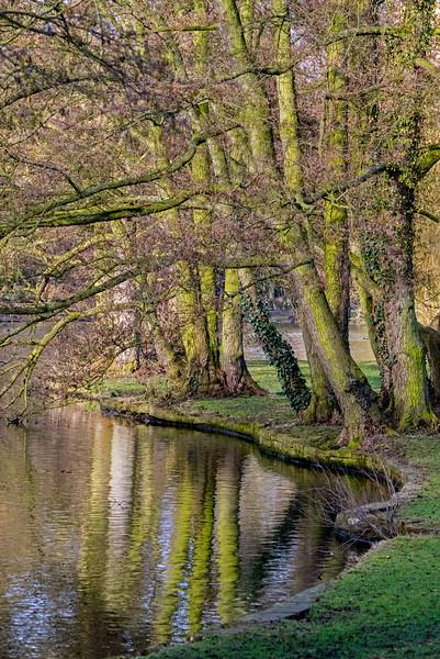 22.03.18 - Boultham Reflections