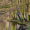 22.03.18 - Boultham Reflections