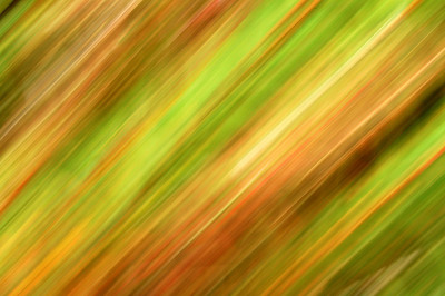 17.09.11 - Dreaming of Grasses  Another abstract experiment
