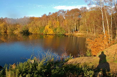 10.12.13 - In the Picture  One of the many rules of photography is to keep your shadow out of the shot, but you know what rules are there for! Most rules can and should be broken in the right circumstances, I think this works. I'd been to my son's Christmas play and took the scenic route home via Swanholme Lakes Nature Reserve. I was amazed at how much colour was still around.