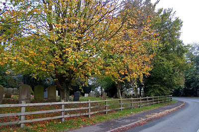 "31.10.13 - Roadside Trees  My fellow producer Pauline and I spent yesterday meeting with interested parties and  scouting locations for our WW1 movie ""Tell Them of Us"". This is part of the churchyard in the village of Thimbleby where the film is set. We also have plans for a living history day in the village next year when we will turn it back to 1914. So far the villagers seem enthusiastic, we just need to get the authorities to agree to closing the road for a day!"