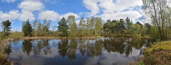 06.04.17 - The Spring Pond