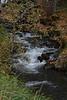 stream1460
