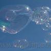 bubbles_1117