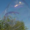 bubbles_1196