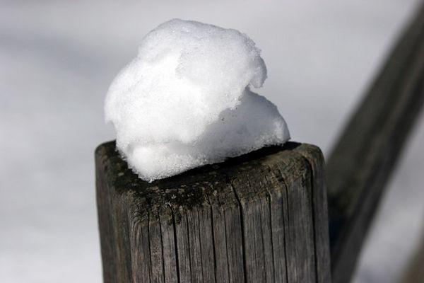 snow03-29-05-6016