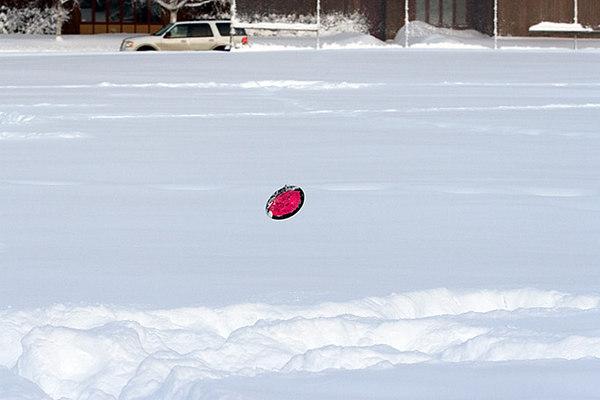 snowpuppy_013