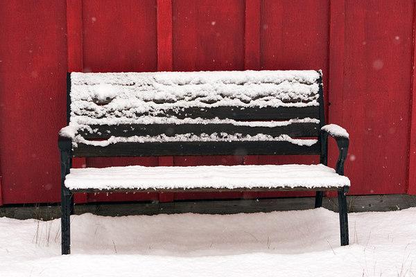 bench5658