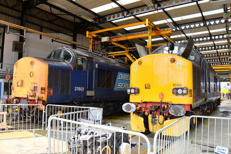 37603 and 37602.