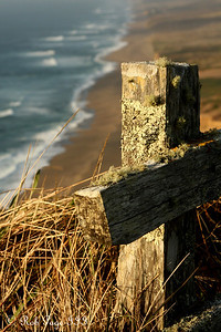 Daily photo for October 12, 2009 (View the image in its  original gallery:)  A fence in Point Reyes National Seashore - Point Reyes National Seashore, CA ... March 12, 2009 ... Photo by Rob Page III
