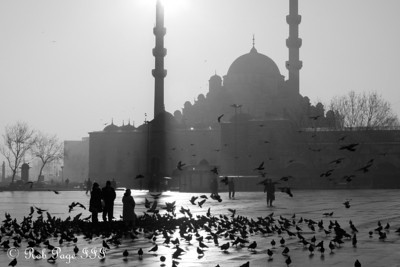 Daily Photo for June 7, 2011  The Yeni Mosque - Istanbul, Turkey ... March 13, 2011 ... Photo by Rob Page III
