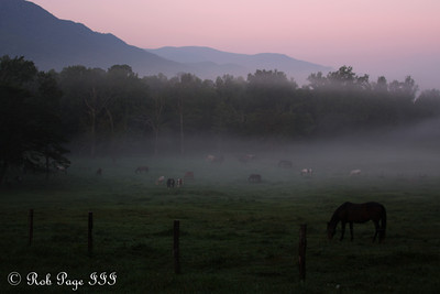 Daily Favorite for October 5, 2011  Cades Cove - Great Smoky Mountain NP, TN ... August 2, 2011 ... Photo by Rob Page III