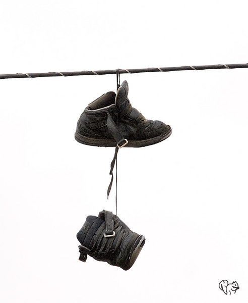 Oct 20th,<br /> <br /> This is just nuts and one of those I had to shots.<br /> These sneeks have been hanging on that wire for 3 years. AEP had poles and wires  in the area replaced, shoes would go right? Wrong.