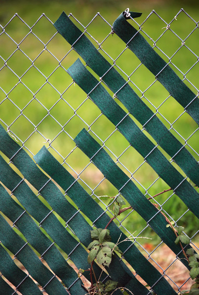 Saw the seemingly random pattern in this fence while on a morning walk near Shasta Lake. California. Jan 1